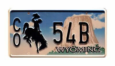Celebrity Machines Longmire | CO 54B | Metal Stamped License Plate • 30.74£