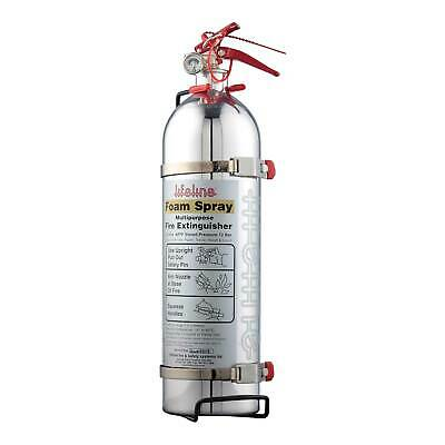 Lifeline MSA Approved Polished Hand Held Race / Rally Fire Extinguisher - 1.75L • 93.48£